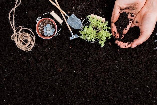 Plantas em baldes com espaço de cópia