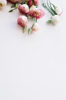 Plantas em flor rosa macio