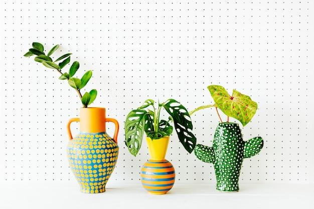 Plantas em vasos étnicos coloridos