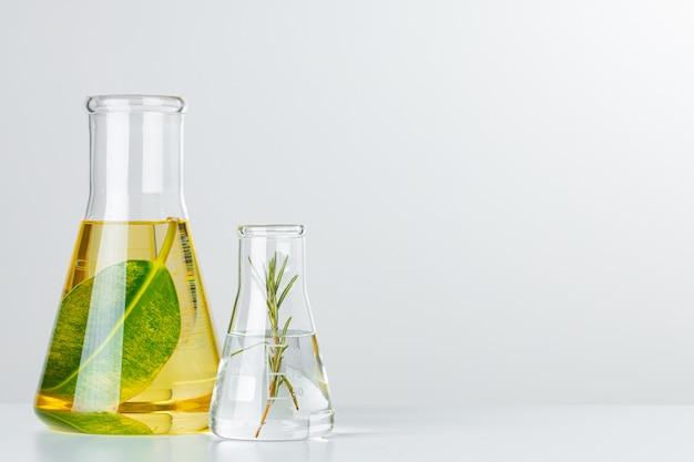 Plantas em vidraria de laboratório. conceito de pesquisas químicas de produtos e medicamentos para a pele