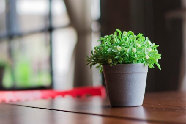 Plantas falsas em vasos de plástico em uma mesa de madeira.