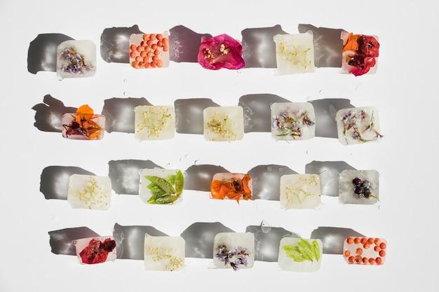 Plantas, flores e frutos em cubos de gelo
