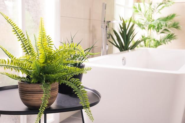 Plantas lindas ao lado da banheira no banheiro