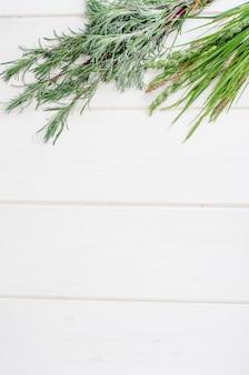 Plantas medicinais selvagens na mesa de madeira branca.