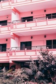 Plantas no conceito de moda rosa. plantas em localização urbana rosa