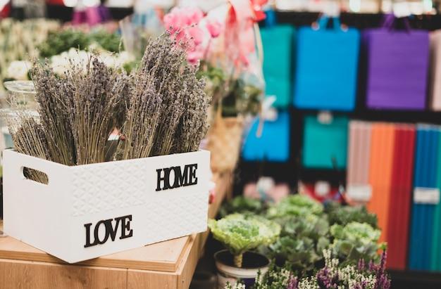 Plantas ornamentais em uma loja de flores. herbário e plantas vivas. decoração e decoração, presentes.