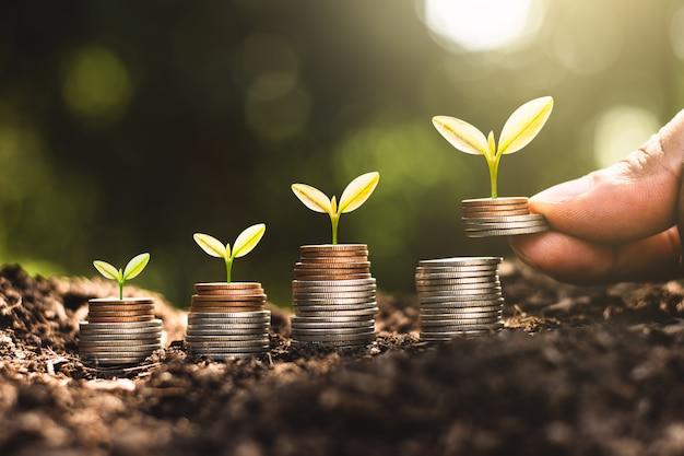 Plantas que crescem em pilhas de moedas com a mão
