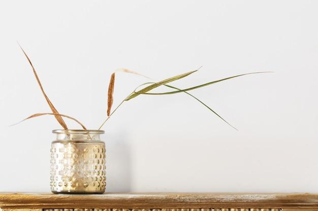 Plantas secas em frasco dourado em prateleira velha em fundo branco