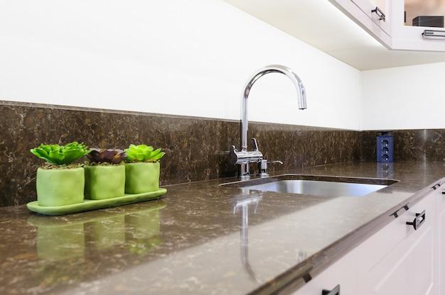 Plantas suculentas na cozinha