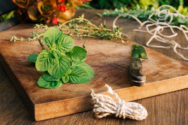 Plantas verdes e faca na placa de corte perto de torções