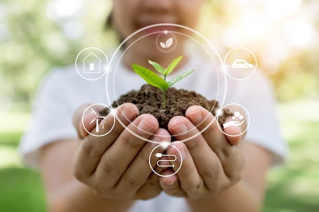 Plante árvore e inovação de salvar o mundo.