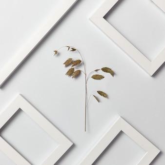Plante uma composição decorativa natural com quadros vazios para o seu texto e o ramo de folha ecológica em uma parede cinza clara. vista do topo.