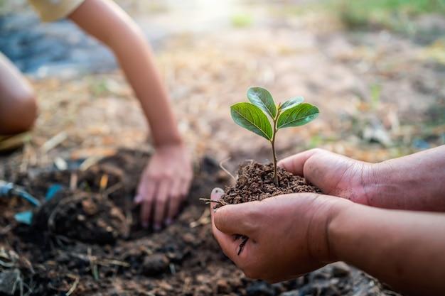 Plantio de árvore no jardim. conceito salvar mundo terra verde