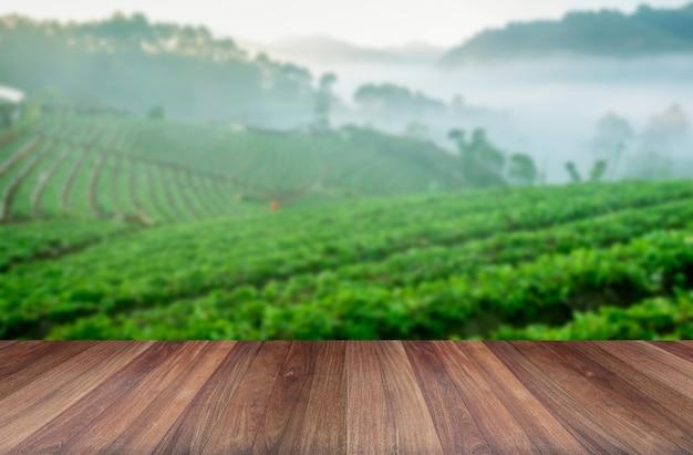 Plataforma de madeira ao lado de plantação de chá