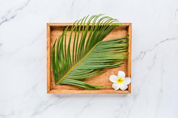Plumeria flor tropical e folha de palmeira em placa de madeira