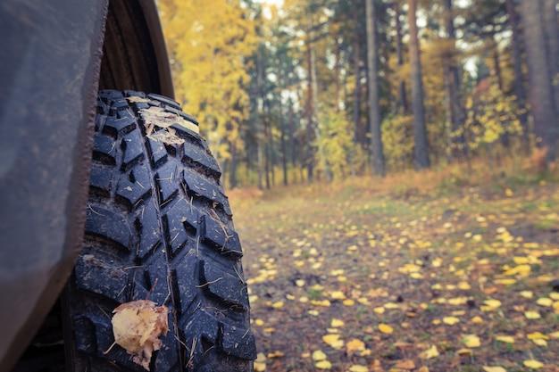 Pneus de lama, fundo de outono, viajar. fechar, copie o espaço