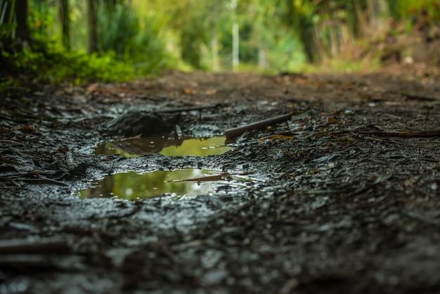 Poça de lama