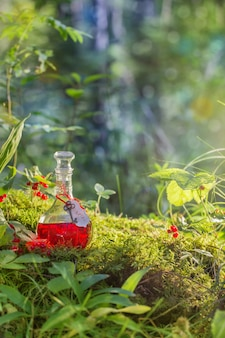 Poção mágica em garrafa na floresta