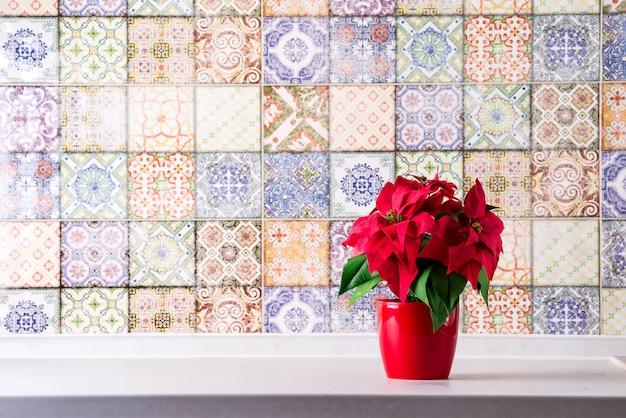 Poinsétia na bancada da cozinha, parede com azulejos antigos