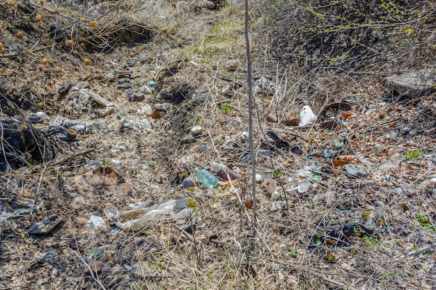 Poluição ambiental. pessoas deixaram detritos na vida selvagem. depósito de lixo na grama perto da floresta, poluindo a natureza e o parque da cidade com lixo e lixo. proteção da natureza, cuidado. ecologia.