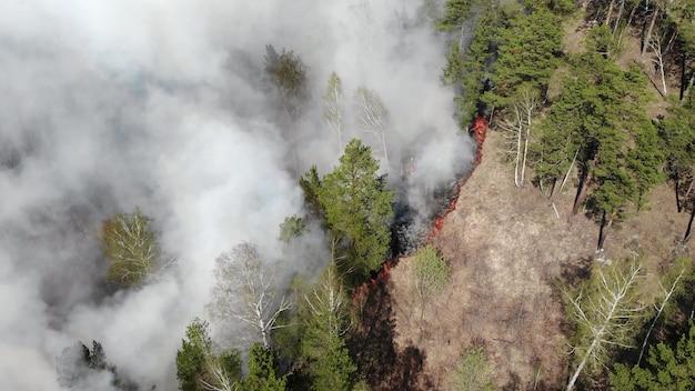 Poluição do ar causada por incêndios florestais, nuvens de fumaça acima do campo em chamas, imagens aéreas. desastre natural épico, incêndio florestal no verão de 2019.
