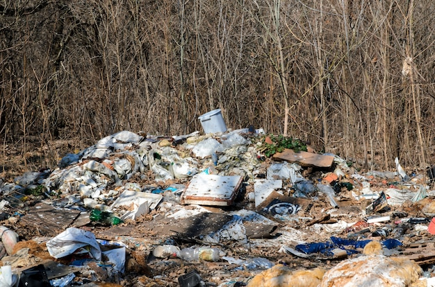Poluição do lixo do meio ambiente.