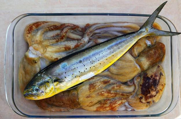 Polvo de peixe golfinho dorado e choco