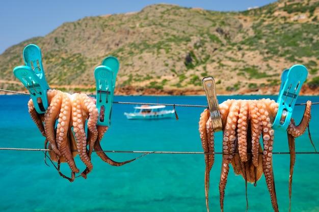 Polvo fresco secando na corda ao sol com águas turquesas do mar egeu.