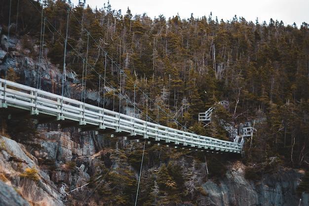 Ponte branca sobre o rio