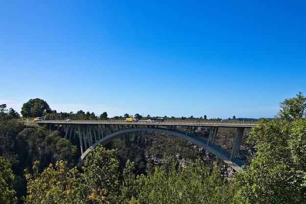 Ponte cercada por vegetação sob o céu claro no parque nacional garden route