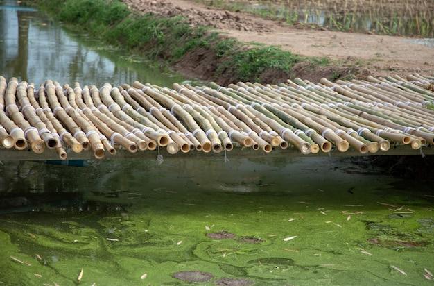 Ponte de bambu aian no jardim ao ar livre de decoração de lagoa