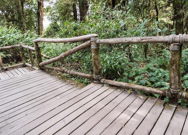 Ponte de madeira com os trilhos da madeira na fuga de natureza.