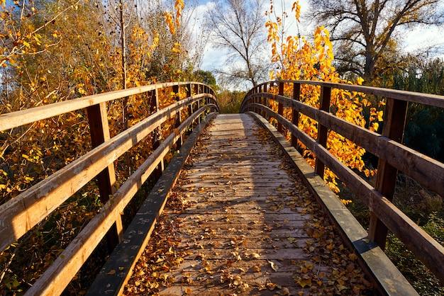 Ponte de madeira do sol outono parque de turia
