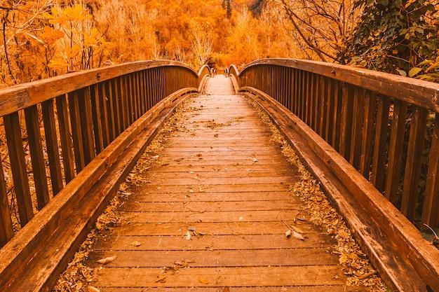 Ponte de madeira em uma floresta de outono