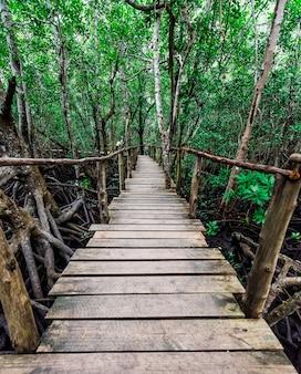 Ponte de madeira estreita