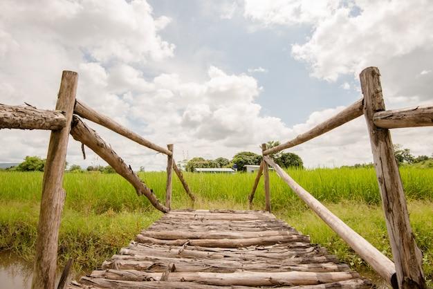 Ponte de madeira no jardim