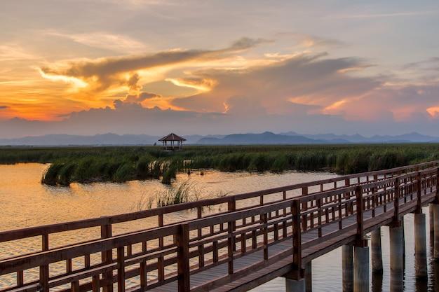 Ponte de madeira no lago de lótus na hora por do sol no parque nacional khao sam roi yot, tailândia