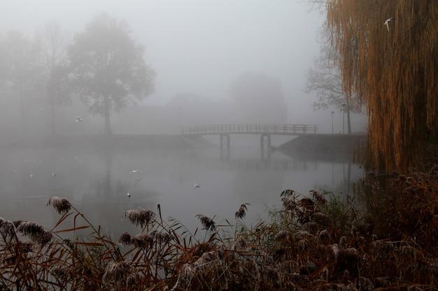Ponte de madeira no parque coberta por uma densa névoa