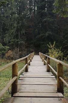 Ponte de madeira para atravessar o lago synevyr na floresta na ucrânia