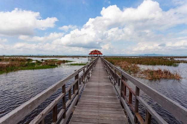 Ponte de madeira para viajar e ver a ecologia da natureza no parque nacional khao sam roi yot, prachuap khiri khan tailândia.