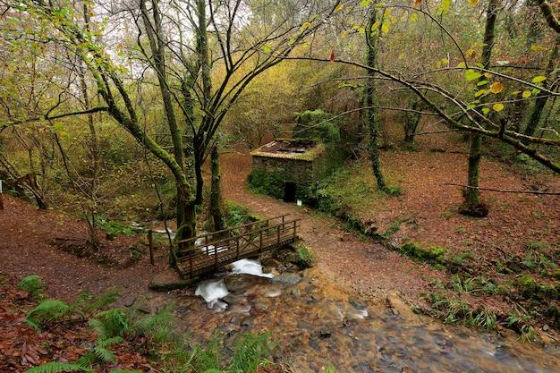 Ponte de madeira sobre um pequeno rio e uma velha casa de pedra abandonada no meio de uma bela floresta na área da galiza, espanha.