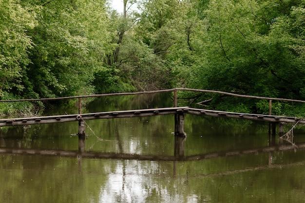 Ponte de madeira velha, ponte de madeira através de um rio pequeno, ponte com natureza.