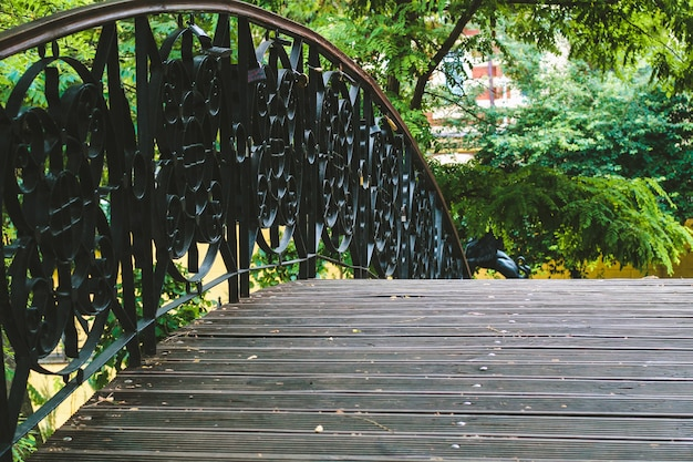 Ponte decorativa no parque com padrões de corrimão de metal.