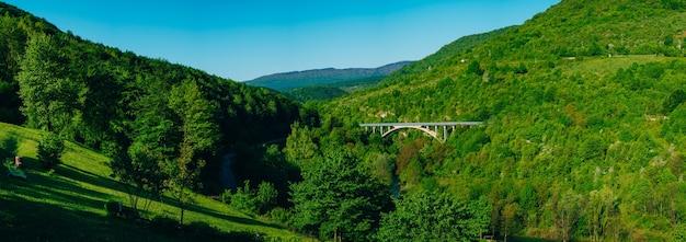 Ponte em arco de carro na floresta nas montanhas