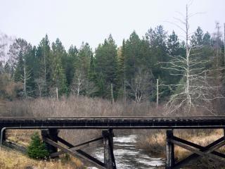 Ponte ferroviária, a ponte