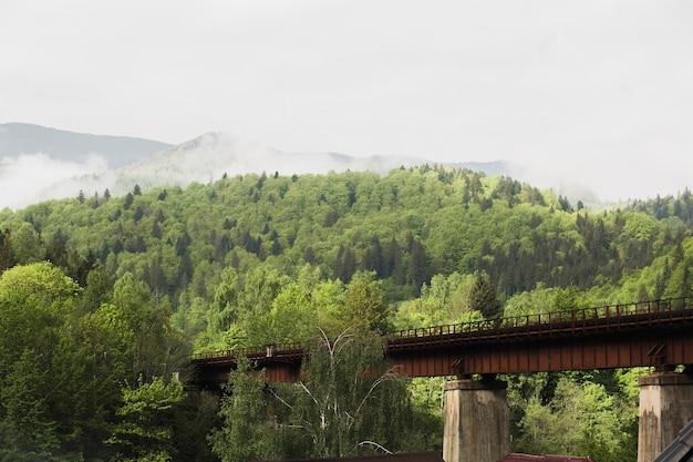 Ponte ferroviária nas montanhas e florestas dos cárpatos em um dia ensolarado
