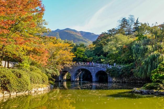 Ponte haetalgyo no outono