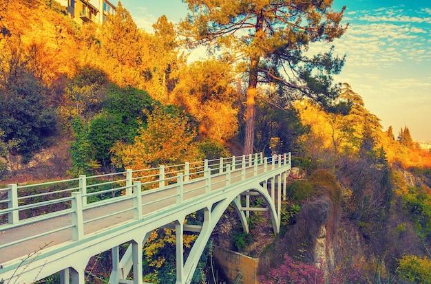 Ponte no jardim botânico de outono em tbilisi, país da geórgia
