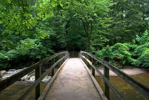 Ponte no parque