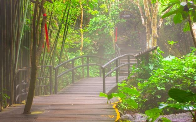 Ponte para a selva, sanya, china, parque nacional yanod
